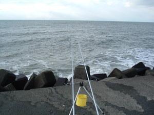 2008_1224fish0005