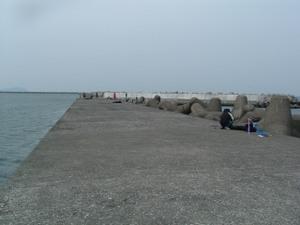 2009_0425kotan0014