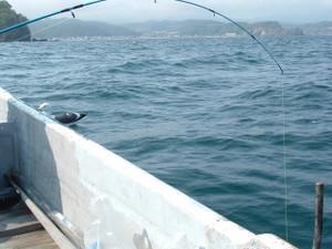 2009_0528boat0010