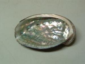 2009_0610awabi0002