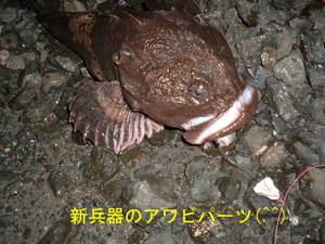2009_1123ichiro0001