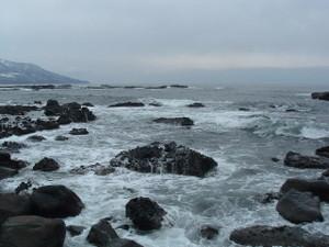 2010_0325wasuri0013