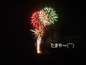 2011_0811farm8120006