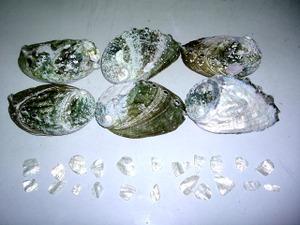 2012_0122awabi0001